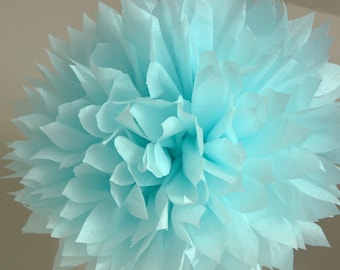 Light blue - one pom