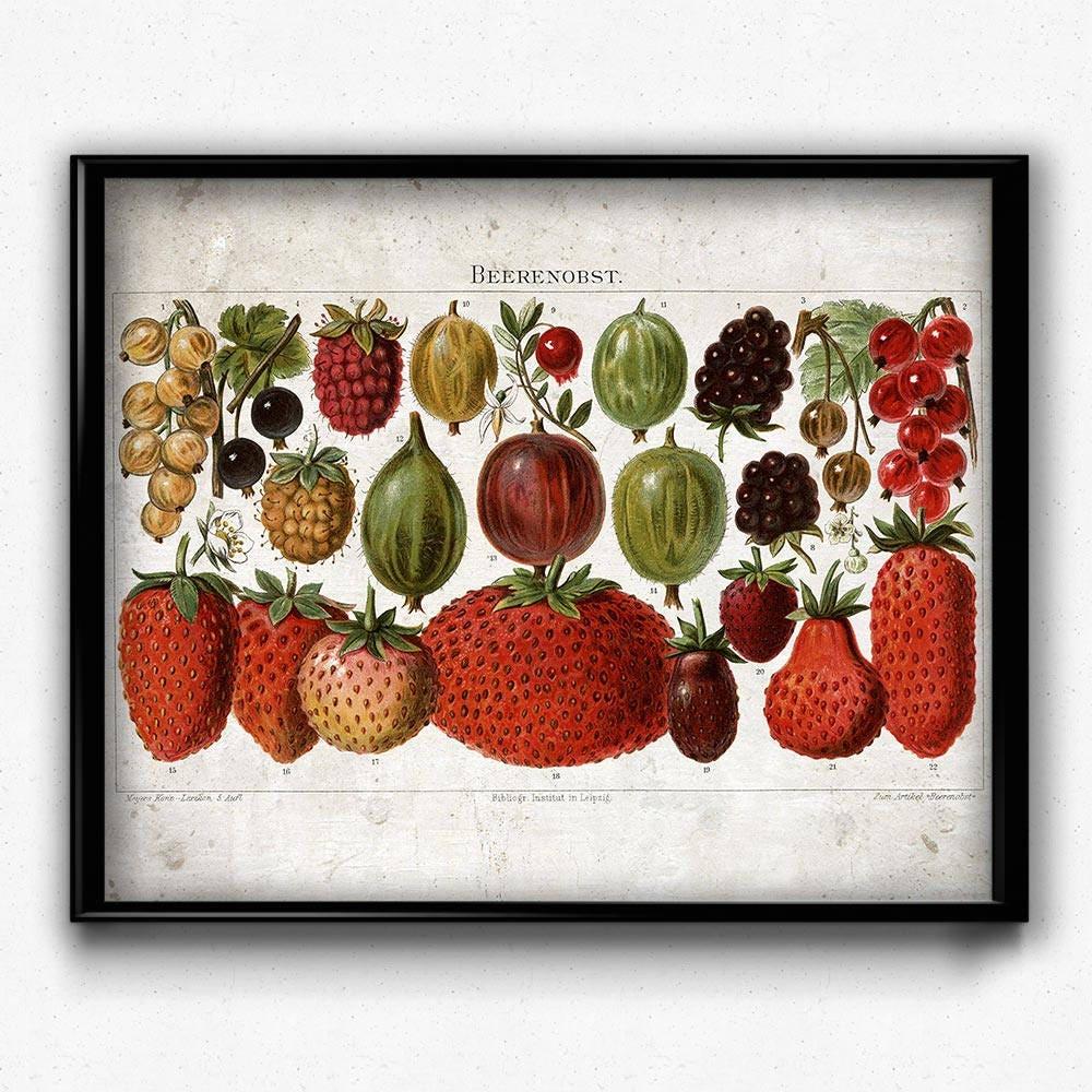 Erdbeeren Obst Vintage-Print Obst Poster Obst-Kunst