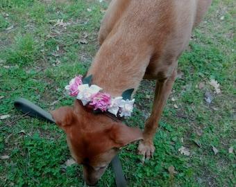 Customizable dog wedding flower collar, dog of honor, dog flower crown, puppy wedding attire, girl dog collar, pink wedding flower girl dog