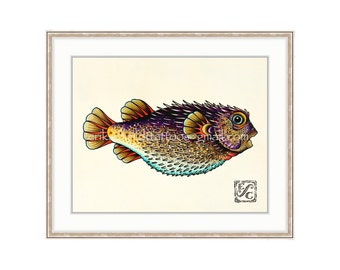 "Puffer Fish/Blowfish 11""x14"" Giclee Print Of A Watercolor Painting For The Saltwater Angler. Burr Fish. Toad Fish. Balloon Fish. Purple Fish"