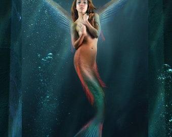 Starfish By J. Corsentino