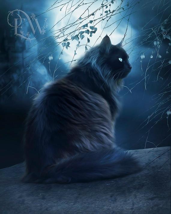 fantasy black cat art print by Enchanted Whispers