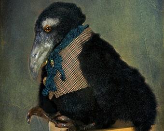 Raven black raven toy crow animal raven animal decor bird Interior doll black raven doll
