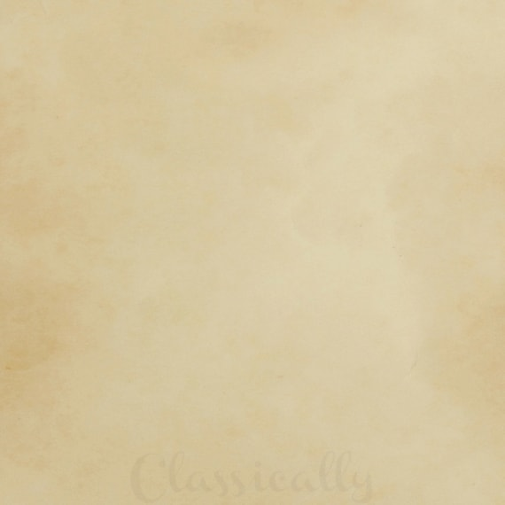 Photo Page: Tan Brown Background Textured Paint Background Picture Photo