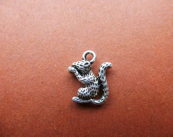 Squirel charms.  Set of 15