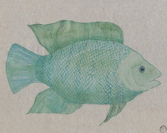Turquoise Fish, watercolor painting, art print, nautical print,  beach decor