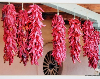 5 x 7 matted photo, chili ristras, New Mexico, photograph