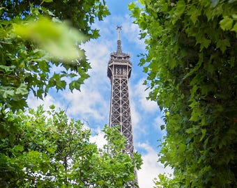 Eiffel Tower in the summer in Paris, France