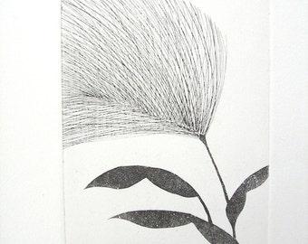 Squirrel Tail Grass (original print)