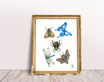 Watercolour Bug Print, Dragon Fly, Moth, Butterfly Print, Gift, Wall Art, Illustration, Painting, Nature, Unique Gift, Home Decor.