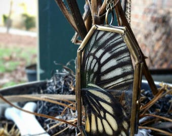 Real Preserved Swallowtail Butterfly Wing Pendant Necklace