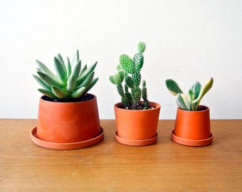 Terracotta mini planters - A set - Set of 3