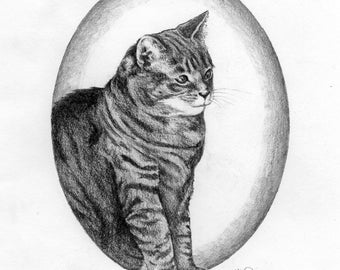 "Animal Lover's Custom Pet Portrait: Pepper Kitty (example), Graphite Pencil, 8""x10"""