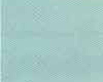 ROBIN'S EGG BLUE 1410 Opaque Enamel   2 oz jar