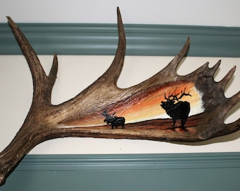 Authentic Moose Antler Acrylic Painting