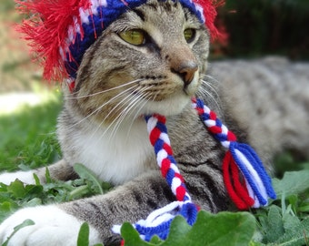 Cat Hat - Cat Costume - July 4th Cat Costume - Fourth of July Cat Costume - The American Wackadoodle Hat for Cats and Dogs