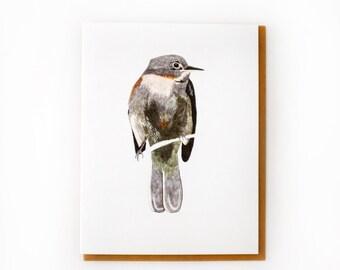 Alder Flycatcher Card