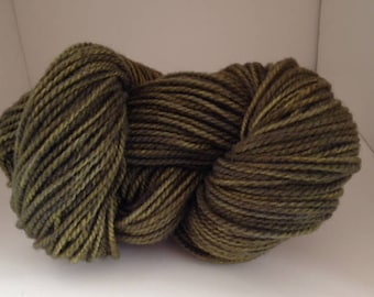 Hand Dyed Corriedale/Rambouillet Yarn   200yds  2-ply Worsted Wt  Lichen