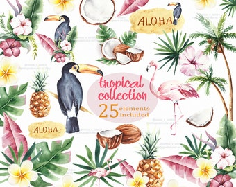 Tropical Summer Clipart png element Toucan coconut clipart Digital Download Palm Leaves invite Bird wedding clipart watercolor clipart