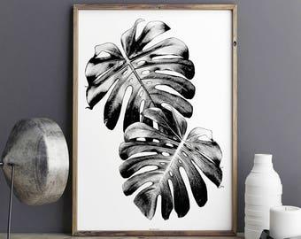 Botanical Art Prints - Monstera Leaf Print - Tropical Print - Black and White Art- Large Wall Art - Botanical Illustration - Botanical Decor