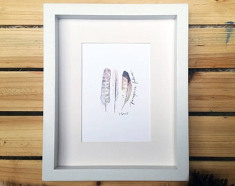 Peregrine Falcon Feathers // Watercolor Print