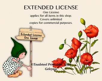 Extended License For ALL Images In This Shop; Commercial Use, Unlimited Amount
