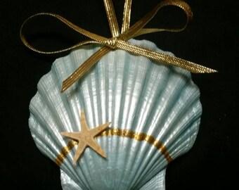 Pearl, shimmery sea shell ornament
