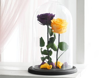Two Beauty and the beast roses (Large), Forever yellow rose, Purple rose, Enchanted Rose, Belle rose in glass, preserved rose, eternal rose
