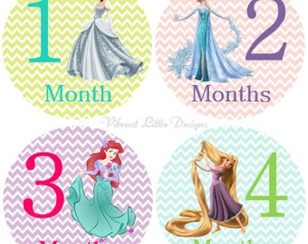 Baby Girl Monthly Stickers, Milestone Stickers, Month Stickers, Baby Month Stickers, Baby Stickers, Princess #21
