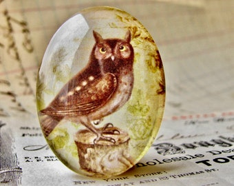 Horned Owl, Woodland Owl, Barn Owl, 40x30mm glass oval cabochon, brown, wisdom bird, handmade in this shop, Bird Illustration collection