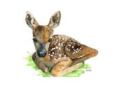 Watercolor Fawn Painting ...