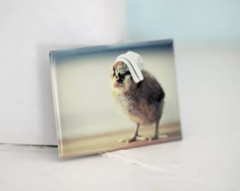 Chicks in Hats Chicken Wearing A White Nurse's Hat Refrigerator Nursing Magnet