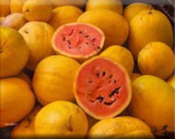 Golden Midget Heirloom Watermelon Seeds Non-GMO Naturally Grown Open Pollinated Gardening