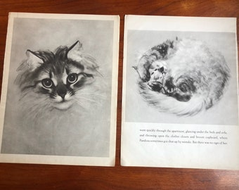 2 Clare Turlay Newberry Vintage Book Prints pandora First Edition
