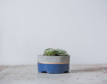Mother's Day Gift for Her, Small Concrete Planter, Navy & Gold