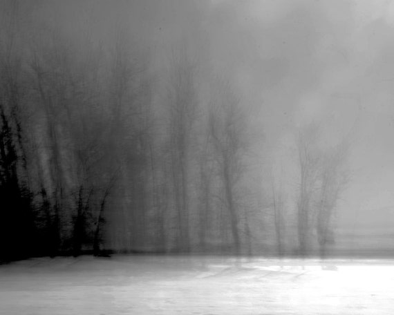 Abstract landscape photography winter dark ghost forest