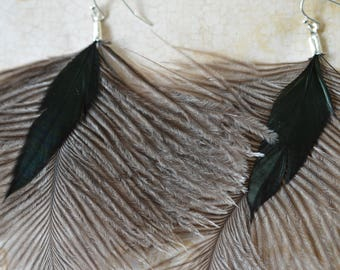 Emu and Rooster feather earrings