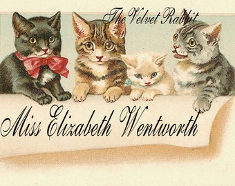 Digital download Instant,cats kittens business calling cards.Great one. Great for cards, decoupage, collage,sewing