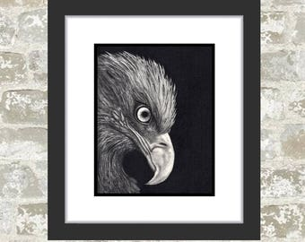 GICLEE PRINT - Eagle Drawing - Eagle Painting - Eagle Art - Bald Eagle - Bird Art - Bird Drawing - Charcoal Drawing - Graphite - Art Print