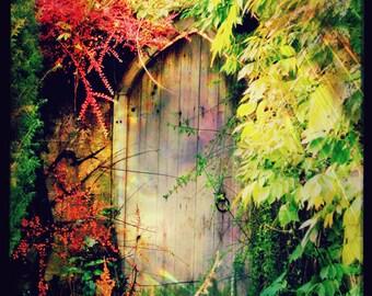 "Overgrown Garden Door Art Print ""The Secret Garden"" Fairy Tale Fine Art Photograph - Colourful Floral Gate - Mysterious English Garden"