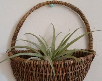 Vintage hanging wicker wall basket/air plant holder