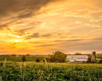 Evening on the Farm, Sun Setting over the Lush Fields of Southern Lancaster County in Pennsylvania, USA, Farmland Sunset, Beauty in Nature,