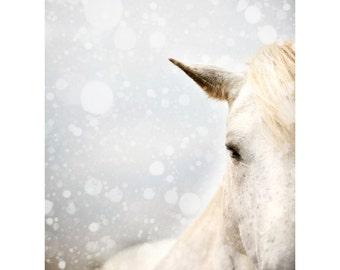 "Horse Photography, Modern Nature Photography, Horse Art Print, Fine Art Photography, Winter Snow, Animal Print Wall Art ""Winter Mare"""