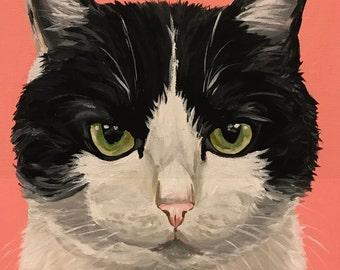 Tuxedo Cat Art Print, Tuxedo Cat Art prints, Tuxedo Cat prints, cat art, cat art prints