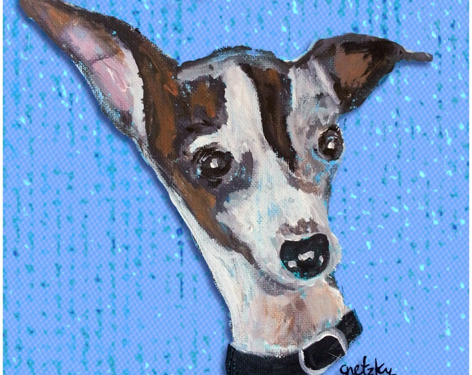 Italian Greyhound Print Poster