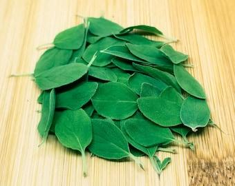 Italian Oregano - Dried Herbs - .5 oz.