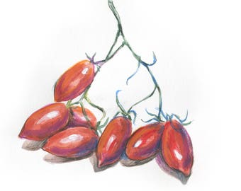tomatoes cherry, of grape tomatoes, original watercolor painting