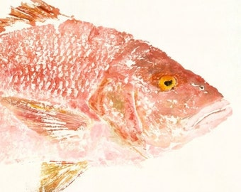 """Red Snapper - """"Rosy"""" - Gyotaku Fish Rubbing - Limited Edition Print (32 x 15.5)"""