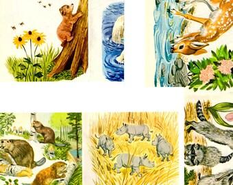 Children Book Printable - Animals