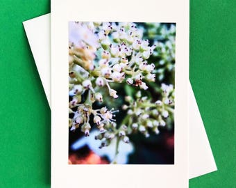 Handmade note card - greeting card - blank note card